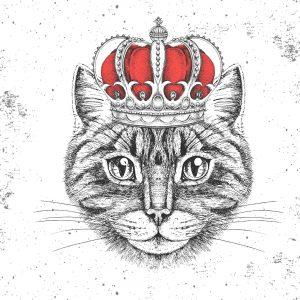 B2B Marketing World | Cat