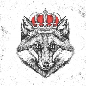 B2B Marketing World | Fox