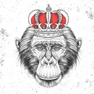 B2B Marketing World | Monkey