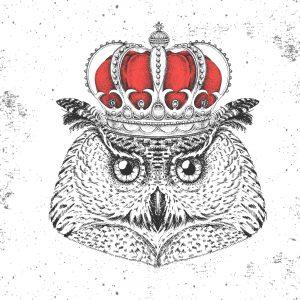 B2B Marketing World | Owl